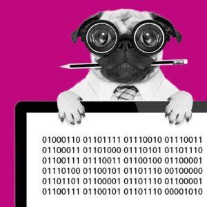 Data Literacy: Raus aus dem Datenchaos! Wie manage ich meine Forschungsdaten? @ ONLINE